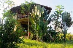 Great Rental Casa Dharma in Mal Pais